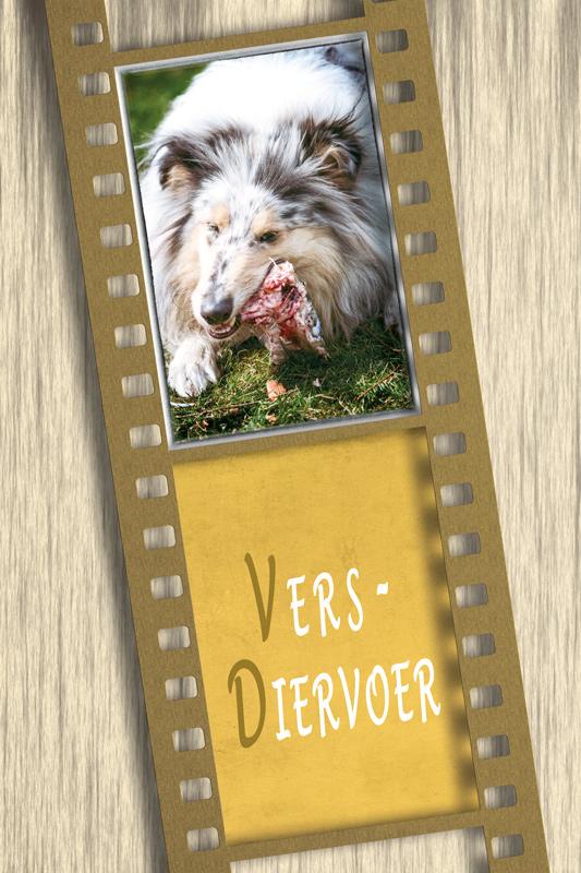 Logo-VDV-strip-web